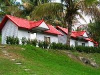 椰林觀海民宿