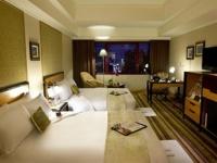 麗尊大酒店(觀光旅館)